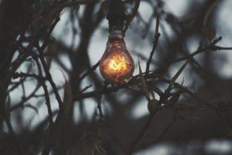 ampoule de jardin